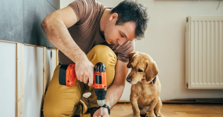 What DIY skills do you need when moving home?
